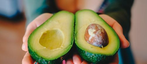Cuáles son los Mejores Alimentos? el aguacate es magnifico