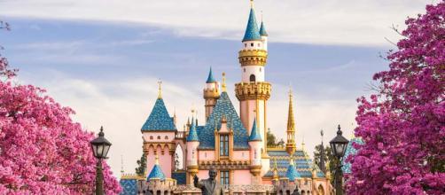 Disneylandia clausura nuevamente torres por bacteria – amsanluis.com - com.mx