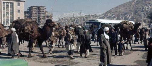 La mirada a Oriente – Blog de actualidad del Norte de África ... - lamiradaaoriente.com