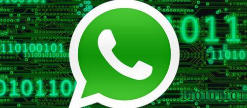 WhatsApp, una graditissima novità sta per arrivare