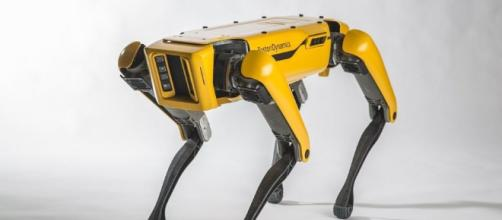 Boston Dynamics presenta una nueva versión del SpotMini, un robot ... - teinteresa.es