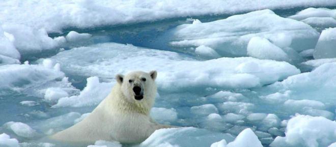 Cambio climático. Se acelera el aumento del nivel del mar