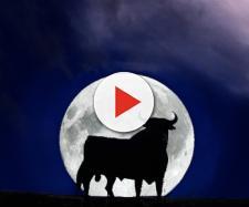 Oroscopo di domani 20 febbraio 2018 | Luna in Toro: previsioni zodiacali su amore e lavoro per i dodici segni dello zodiaco