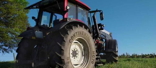 Características de la agricultura tradicional y moderna