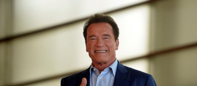 Arnold Schwarzenegger interpreta la película Kung Fury de Michael Fassbender