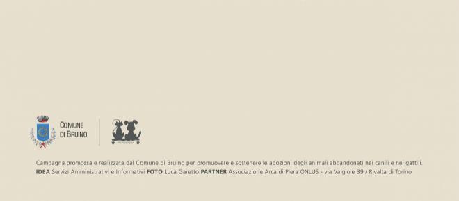 Bruino promuove una campagna a quattro zampe