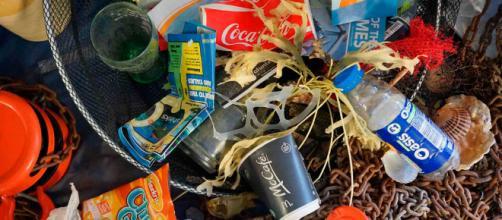 Botellas de plástico son una amenaza para el océano.