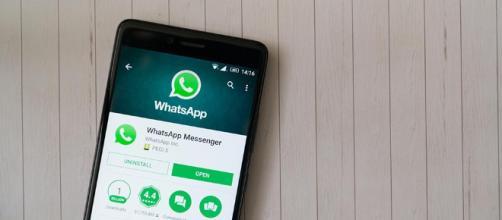 Whatsapp e la sicurezza: nuovi aggiornamenti in arrivo