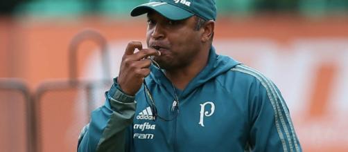 Veja as novidades sobre o Palmeiras