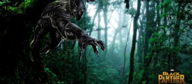 Black Panther in action! (Image via Bryan K Ward/Flickr)