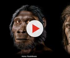 Evoluzione, l'Homo erectus potrebbe essere stato un marinaio
