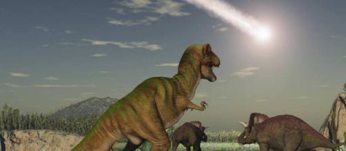 Descobertas e curiosidades sobre a vida dos dinossauros