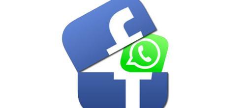 Dos de las grandes redes sociales mas utilizadas.