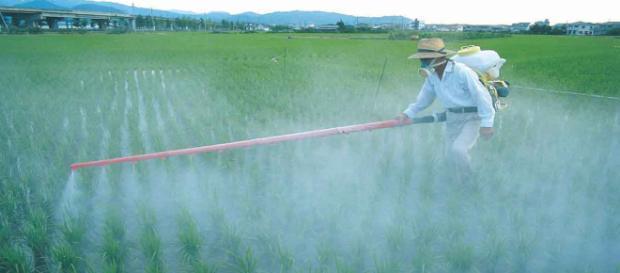Los fertilizantes ayudan al agricultor.