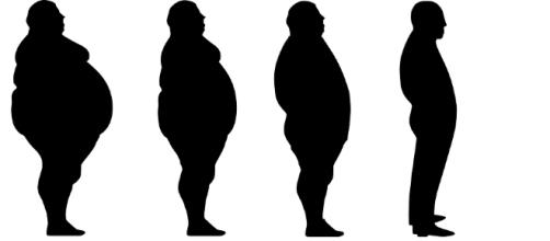 Eating right will help you lose weight and stay fit l(Image via lose-weight-fat-slim-diet-loss/Youtube)
