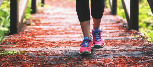 Caminar es un ejercicio aeróbico completo. Public Domain.