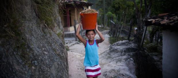 Pobreza y desarrollo infantil: más allá de los primeros 1000 días ... - elpais.com