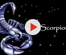 Oroscopo 24 febbraio 2018: segno super favorito lo Scorpione