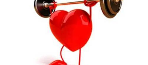 5 consejos para tener un corazón sano | Dietas y Nutrición ... - sportlife.es