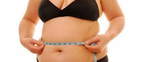 La obesidad es uno de los problemas más preocupantes relacionados con la salud en los países occidentales.