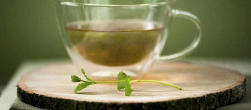 Nutrición: Por qué todo el mundo debería desayunar té en lugar de cafe