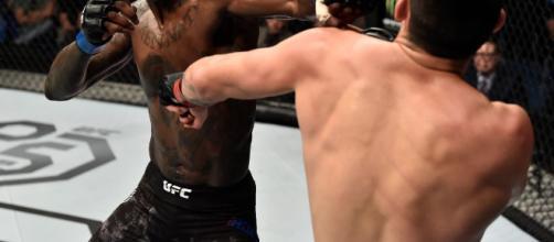 """""""Style Bender"""" obtuvo una contundente victoria en TKO en la segunda ronda en su debut promocional en el UFC 221 contra Rob Wilkinson"""