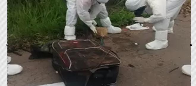 Bebés gêmeos são encontrados mortos dentro de mala de viagem