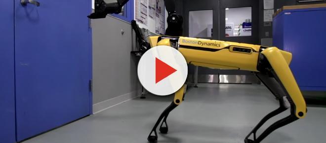 È stato creato il primo cane robot, apre anche le porte, video