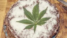 Hombre crea un pastel con 'Cannabis' y hace 'alucinar' a una familia Increíble.