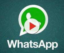 Whatsapp: le chat di gruppo potranno avere delle descrizioni