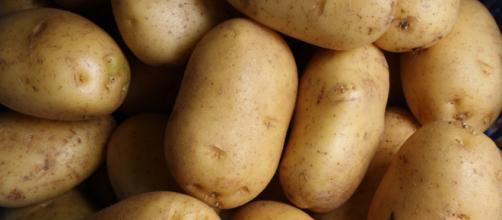4 ricette per cucinare le patate in modo fantasioso