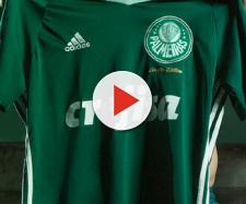 O jogador já veste a camisa do Verdão
