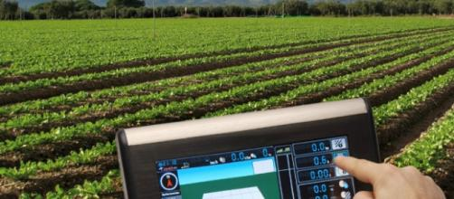 La agricultura de precisión es muy importante.