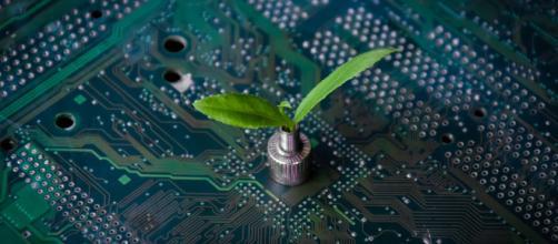 Los desafíos para la Inteligencia Artificial en la agricultura.
