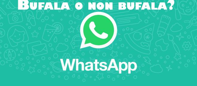 Whatsapp e la notizia dei 35 euro in più sulla bolletta della luce