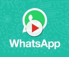 In arrivo il 'trillo' di WhatsApp per chi ignora i messaggi