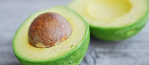 Aguacate/Avocado/ P. Americana | Zoom's Edible Plants - wordpress.com