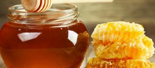 Antimicrobial properties of honey. Image Credit: Shahad Bare / YouTube screenshot