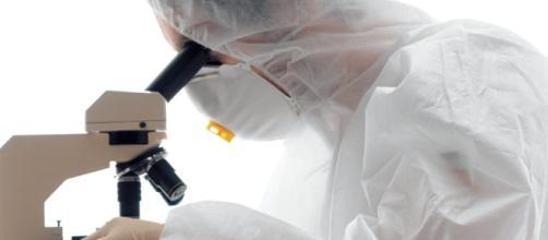 Cómo eliminar los parásitos patógenos del organismo.