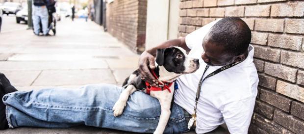 Hombre y perro indigente se encuentran el uno al otro