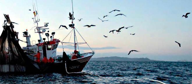 La pesca industrial ocurre en más de la mitad de los océanos