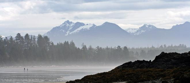 A detached foot belonging to a Washington man has washed ashore in Canada