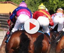 Sondaggi clandestini mascherati da finte corse di cavalli