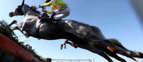 Talking Horses: Saturday's TV races guide on Betfair Hurdle day ... - scorescan.com