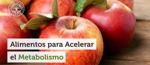 Alimentos para Acelerar el Metabolismo - globalhealingcenter.net