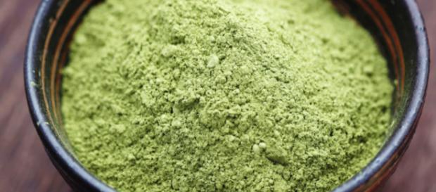 La fiebre del té matcha: el polvo verde que enloquece a las famosas - expansion.com