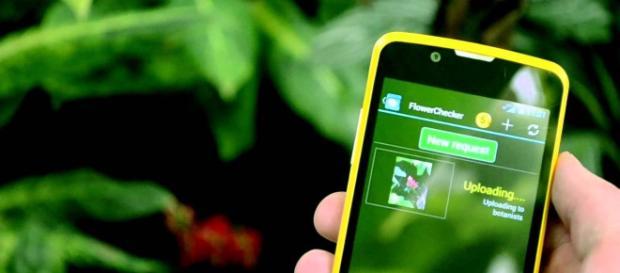 La tecnología y la agricultura se fusionan.