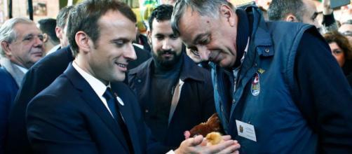 Au salon de l'agriculture, Emmanuel Macron adopte une poule