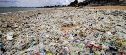 El plástico es el principal enemigo de la naturaleza.