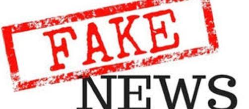 Qual o impacto político das fake news?